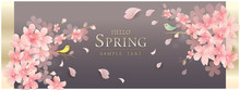春の花 桜 Luxury spring Flowers background