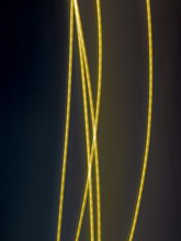 Yellow Energetic Tubes On Mystic Dark Background Abstract Fine Art Photography