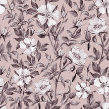 Dog Rose Seamless Pattern. Gently Pencil Background For Fabrics, Textiles, Wrapping, Wallpaper, Web Pages, Wedding Invitations. Floral Ornament In Vintage Style.