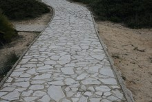 Crazy Paving Path