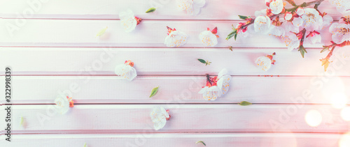 Fotografía Easter Spring Blossom on white wooden plank background