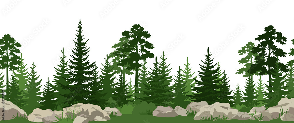 Fototapeta Seamless Horizontal Summer Landscape with Green Pine, Fir Trees, Bushes and Grass on the Stones. Vector