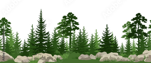 Seamless Horizontal Summer Landscape with Green Pine, Fir Trees, Bushes and Grass on the Stones. Vector - 322998907