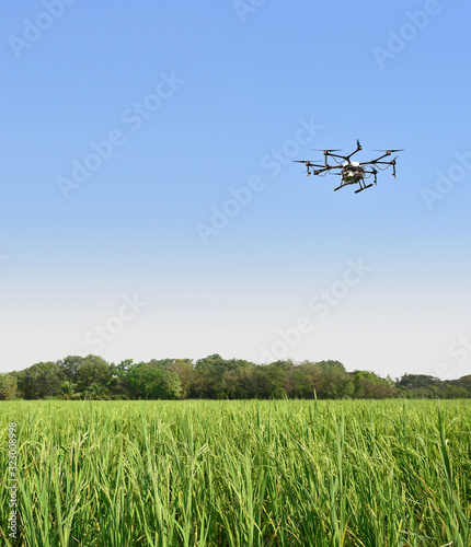 Smart farm use drone flying  spray on blue sky in the rice fields Wall mural