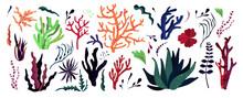 Underwater Sea World Dwellers,...