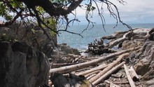 Slow Panning Of A Rocky Beach In Vancouver With Scattered Driftwood In Slow Motion.