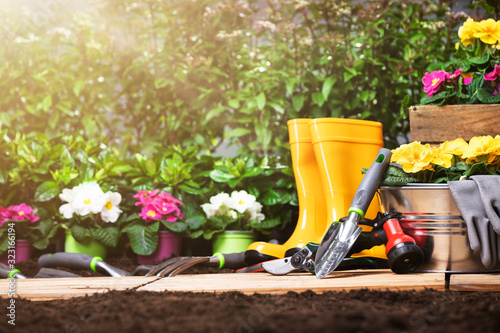 Fototapety, obrazy: Gardening Tools Set And Flowers