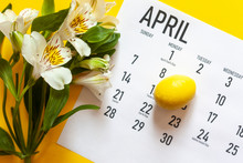 April 2020 Monthly Calendar With Yellow Easter Egg On The Bright Yellow Background. Close-up View Of Monthly April Calendar. Easter 2020 Calendar With A Bunch Of Fresh Spring Flowers