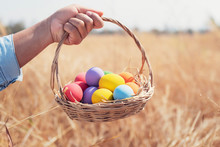 Easter Painted Eggs In Basket Hand Holding Over Meadow