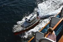Cruise Passenger Watching The ...