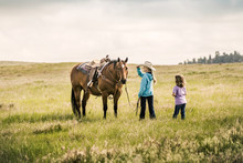 Two Young Girls With A Horse I...