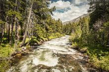 Mountain Stream In The Mountai...