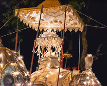 Elephant Carrying The Tooth Ofr Buddha Relic During The Esala Perahera Festival