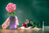 Composition of hydrangea and eustoma. Flowers, apples and dishes on a green background. Country still life. Provence. Forged crockery, pink hydrangea, apples and lysianthus.