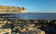 Flamborough Cliffs At North Landing