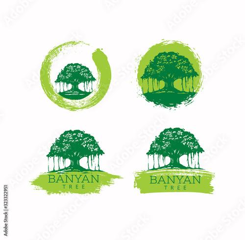 Banyan Tree Holistic Healing Vector Design Element On Textured Background Wallpaper Mural