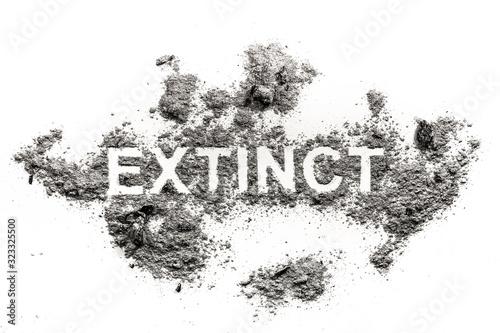 Extinct word written in ash, dust or dirt as animal species or nature destructio Wallpaper Mural
