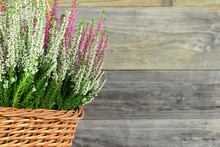 Heather Flowers In Basket On Wooden Background