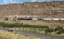 Big Brown Mountain In The Daytime With A Bridge As Well As A Train And A Garden Next To The Road In Maryhill State Park On The Border Of Oregon And The Columbia River In Klickitat County Washington St