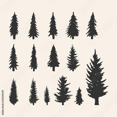 Платно Vector silhouette of different pine trees