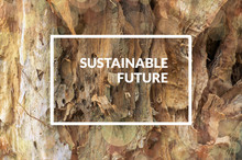 Sustainable Future Poster Design With Old Tree Bark Texture