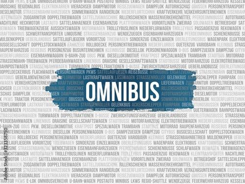 Obraz na plátně Omnibus