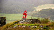 Welsh Red Dragon Symbol In The...