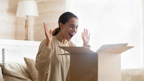 Fototapeta Overjoyed female customer happy with internet delivery order obraz