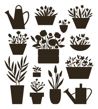 Vector Illustration Of Plants ...
