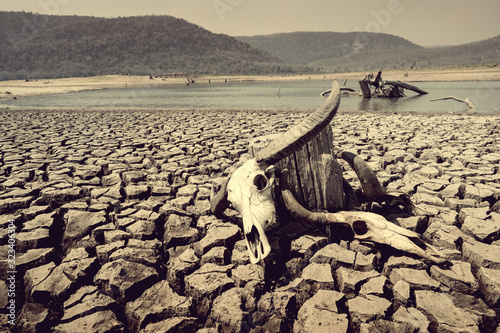 Foto cracked earth from arid drought weather in dam or river, hot summer nature and w