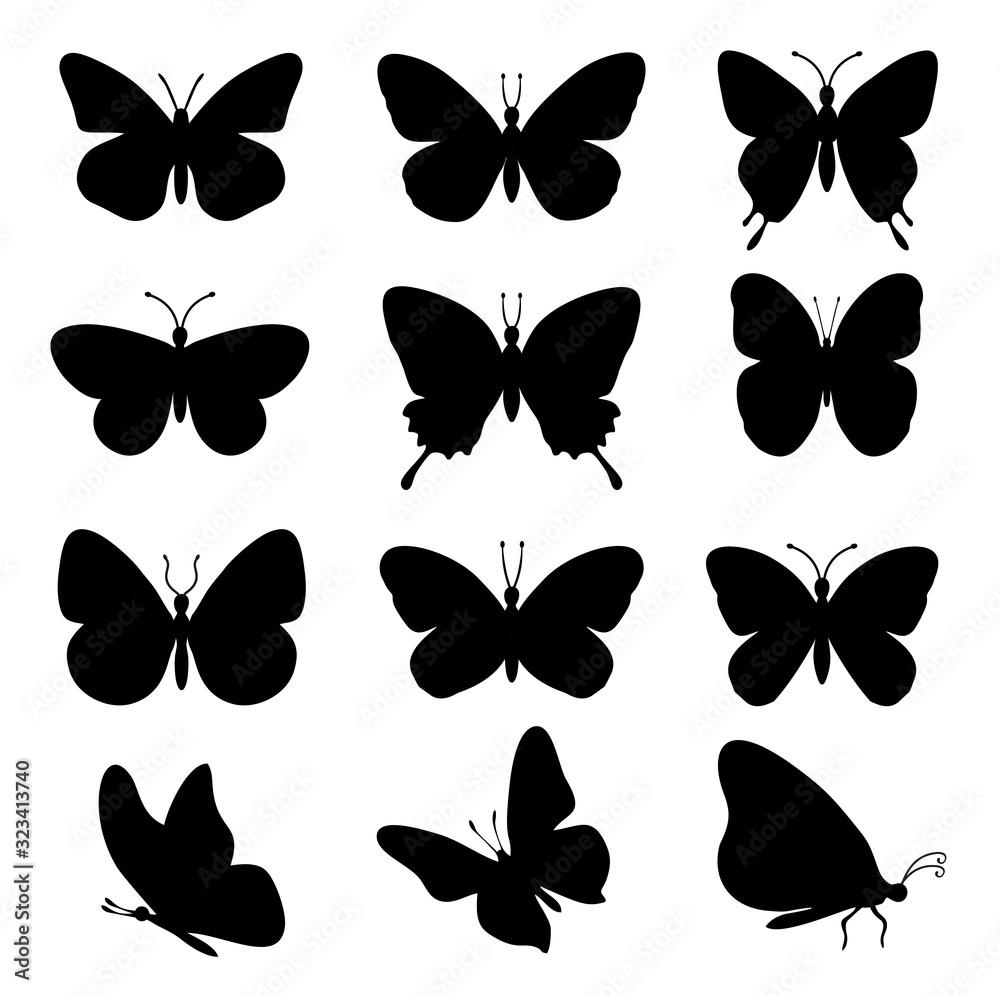 Fototapeta Butterflies silhouettes. spring butterfly silhouette collection isolated on white background. Vector butterfly set.