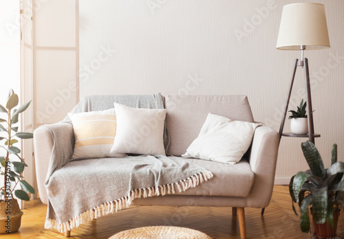 Fototapeta Cozy home interior sofa and cushions and floor lamp obraz