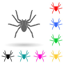 Spider Tarantula Multi Color Style Icon. Simple Glyph, Flat Vector Of Insect Icons For Ui And Ux, Website Or Mobile Application