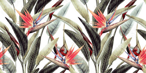 Obraz Kwiatowy wzór z tropikalnymi liśćmi i strelicją - fototapety do salonu