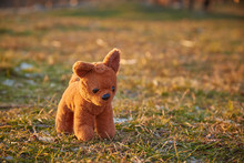 A Small Brown Plush Toy Dog St...