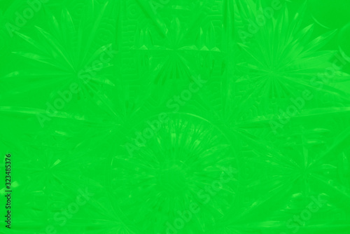 Green vegetal background with leaves patterns