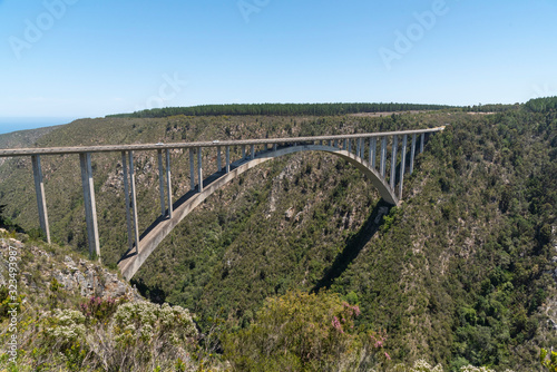 Canvas-taulu Bloukrans Bridge, Eastern Cape, South Africa