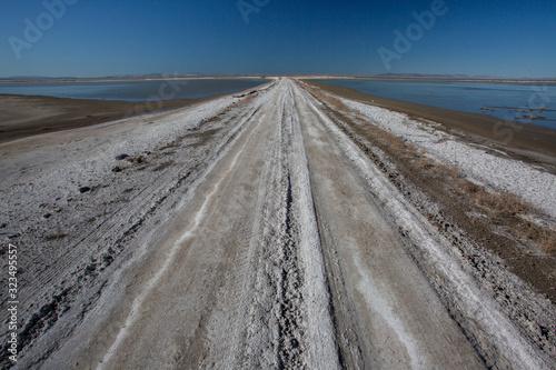 Road through alkali-shrub wetlands at Stillwater NWR Canvas Print