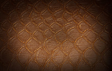 Brown Flake Skin Texture. Background.Copy Space