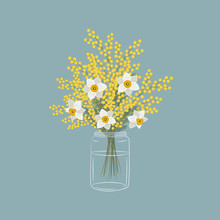 Mimosa And Daffodils In A Glas...