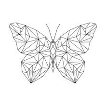 Polygonal Geometric Outline Il...