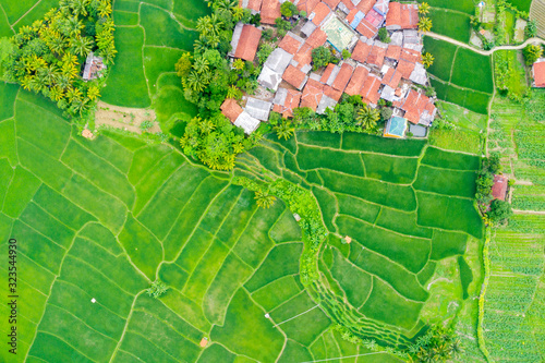 Top down view of village and green paddy field