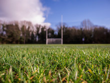 Grass On A Pitch In Focus, Iri...