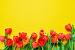canvas print picture - Border of red tulips on a yellow background. Beautiful greeting card. Holidays concept. Copy space, top view.