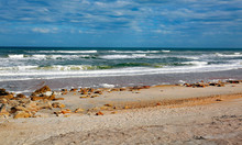 Florida Waves And Coquina Rock...