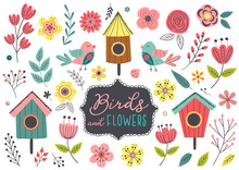 Set Of Isolated Spring Birds A...