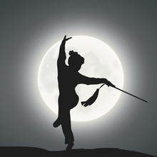 A Female Kung Fu Master Under ...