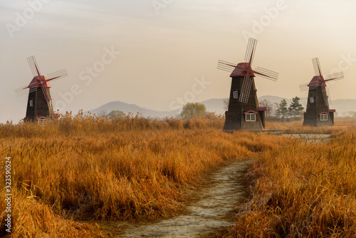 Yellow grasses and windmills in autumn.