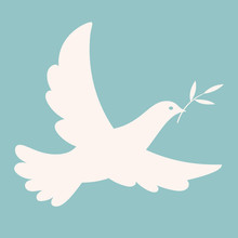 Isolated Dove With An Olive Branch Flying In The Blue Sky