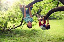 Friendship, Childhood, Leisure...
